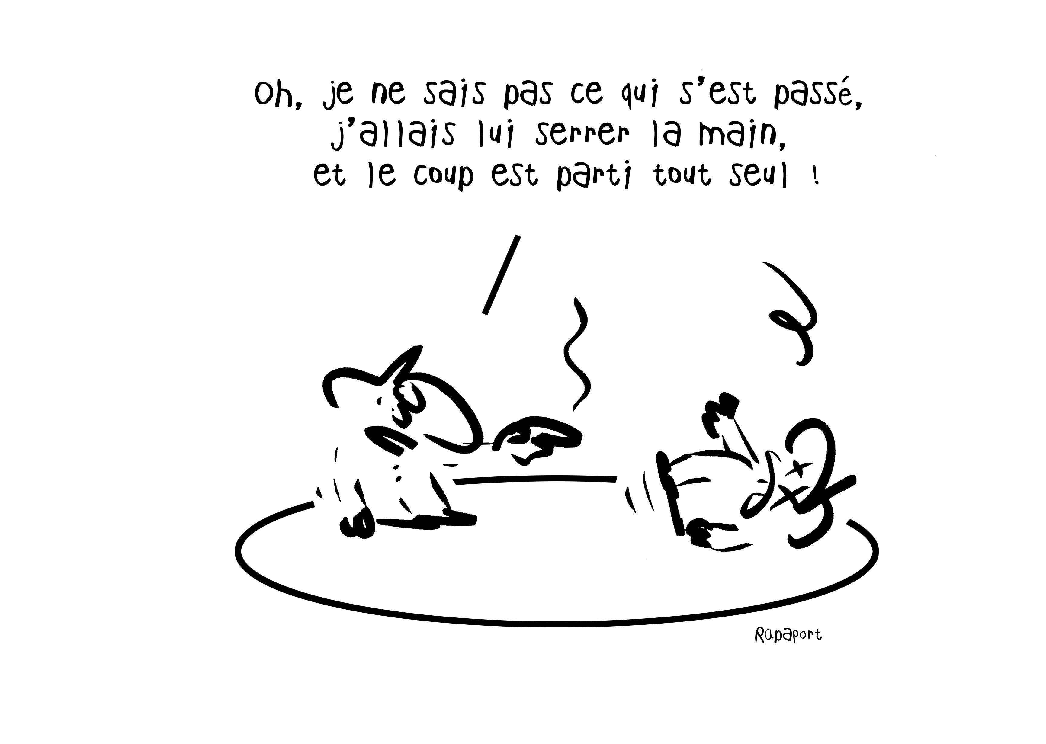 RAPAPORT DESSINS:BAROMÈTRE ENTREPRISE25