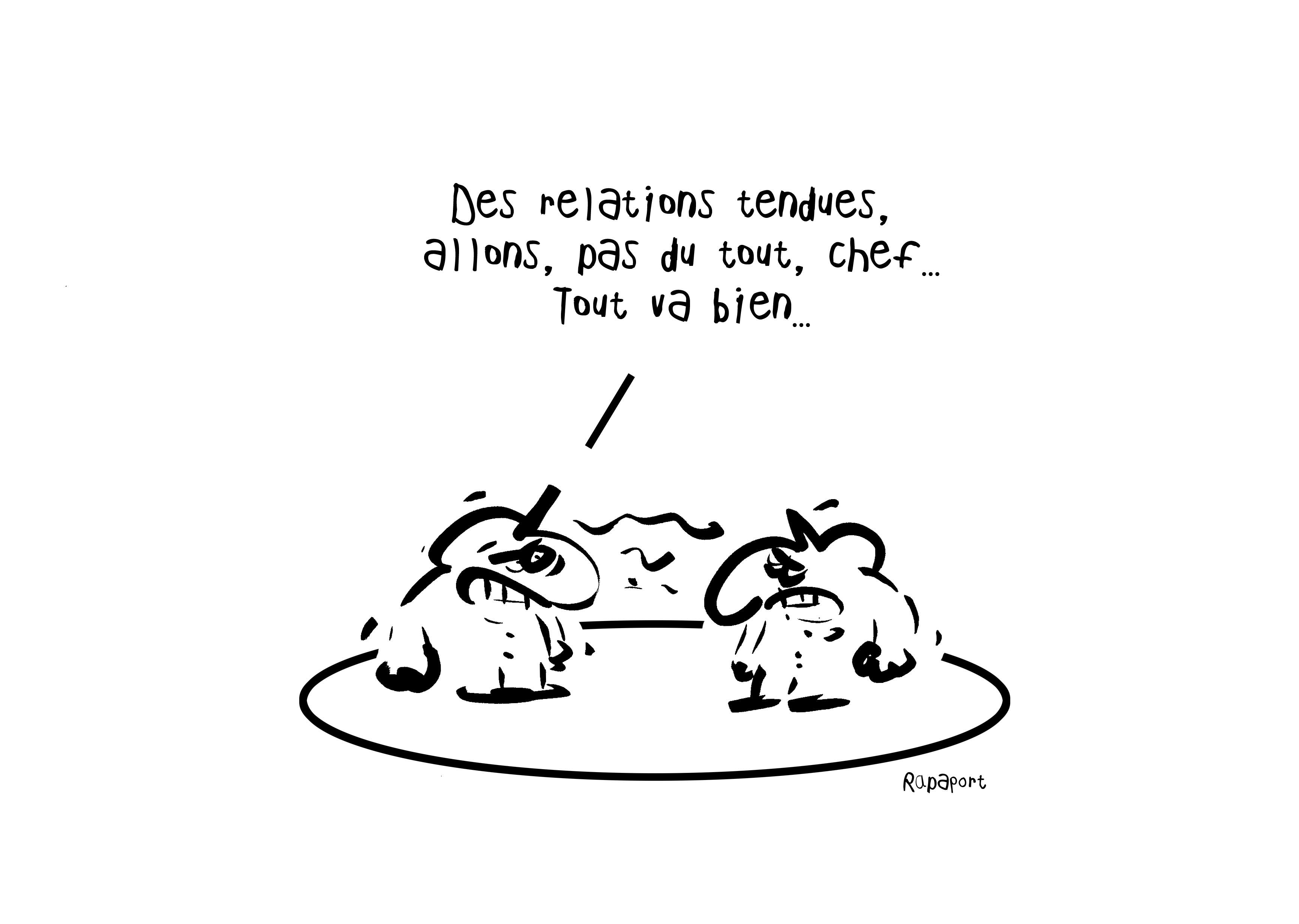 RAPAPORT DESSINS:BAROMÈTRE ENTREPRISE26
