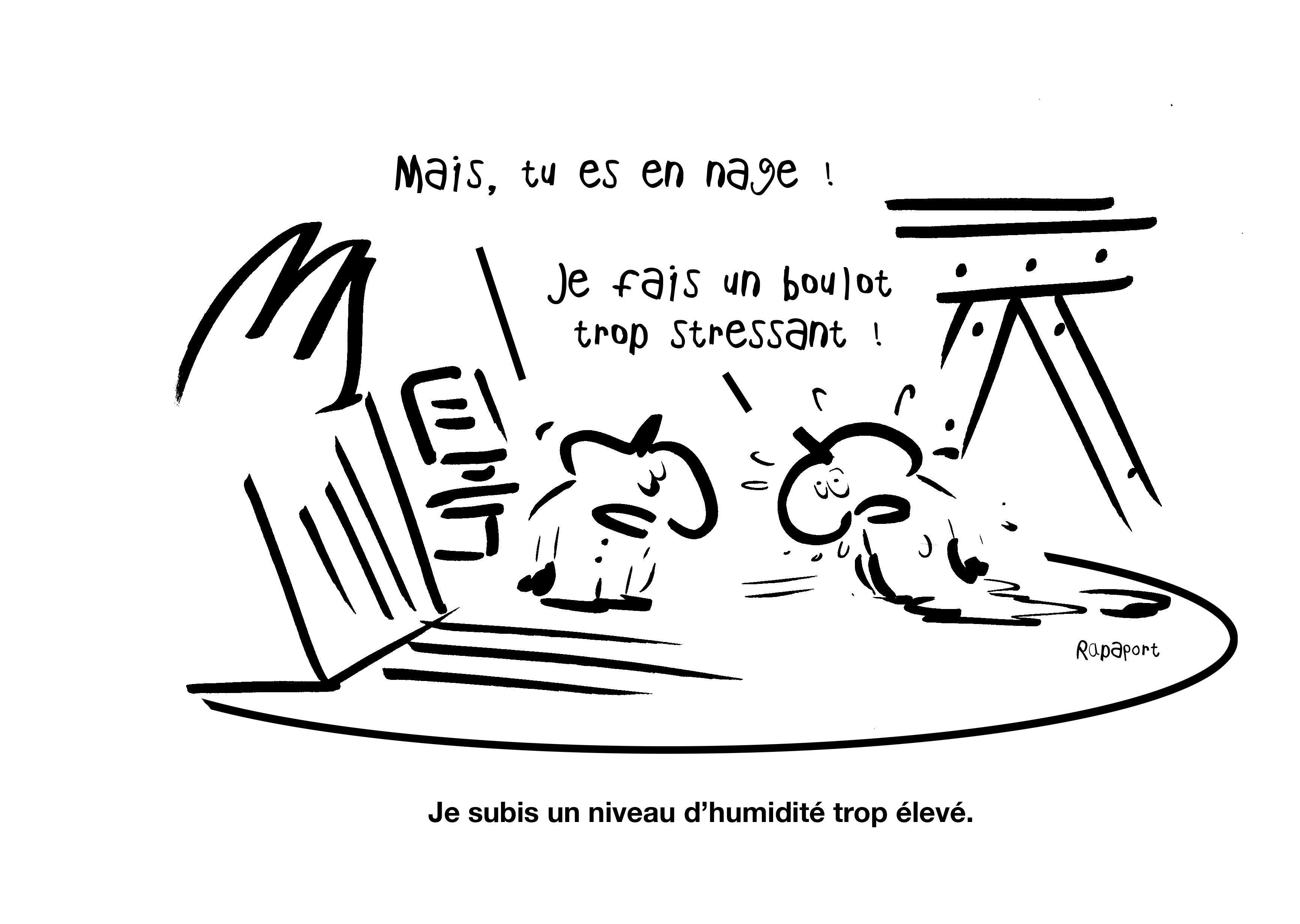 RAPAPORT DESSINS:BAROMÈTRE ENTREPRISE34