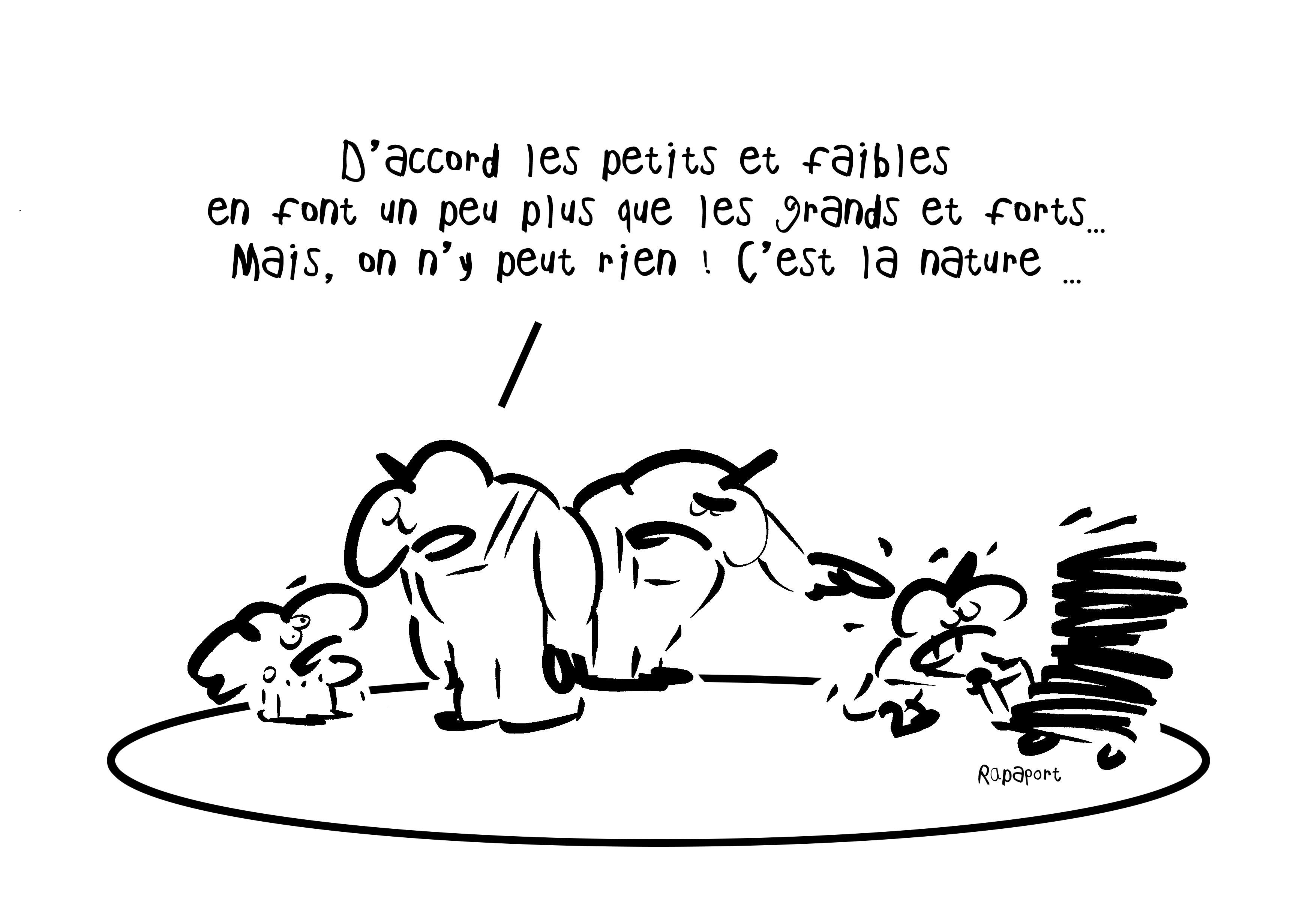 RAPAPORT DESSINS:BAROMÈTRE ENTREPRISE41
