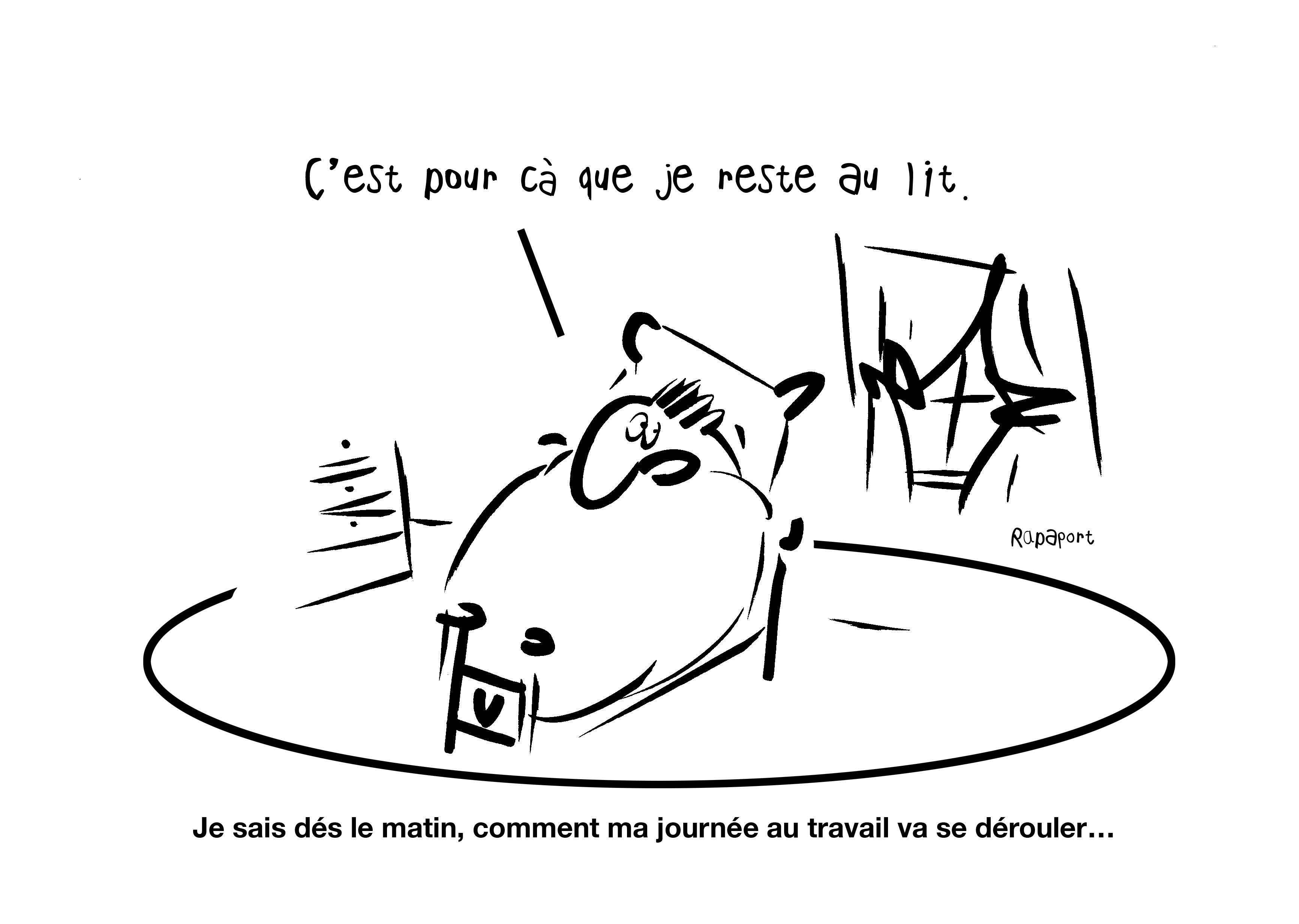 RAPAPORT DESSINS:BAROMÈTRE ENTREPRISE51