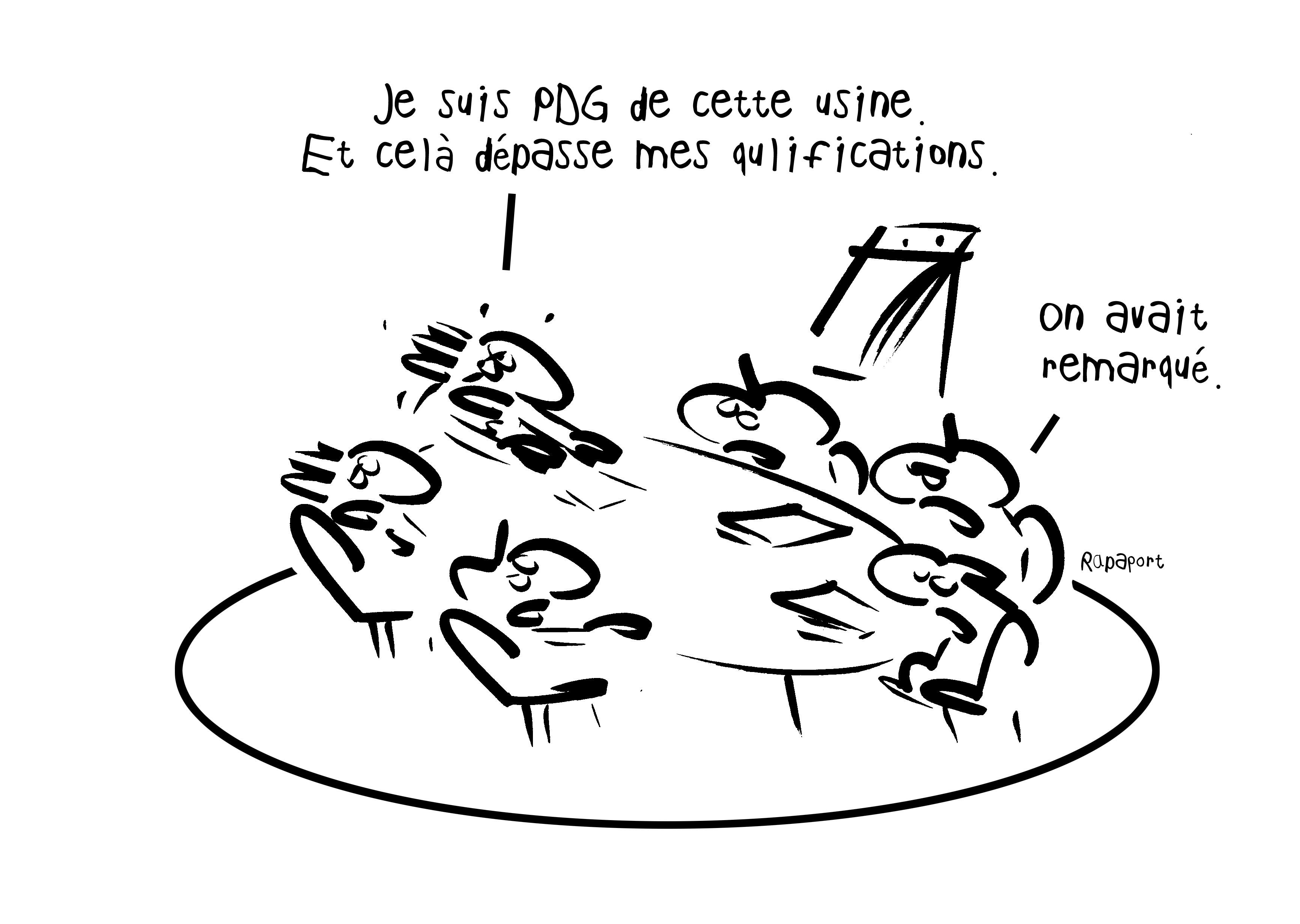 RAPAPORT DESSINS:BAROMÈTRE ENTREPRISE84
